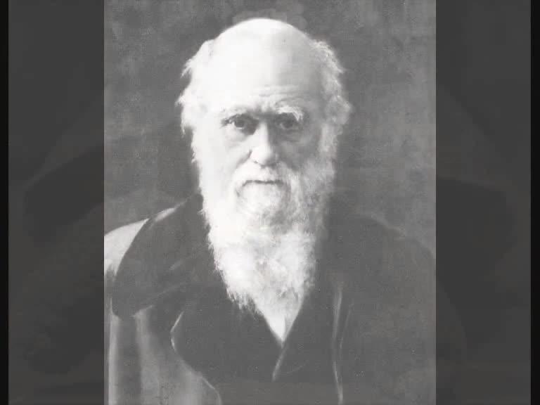 Sabe quem foi Charles Darwin?