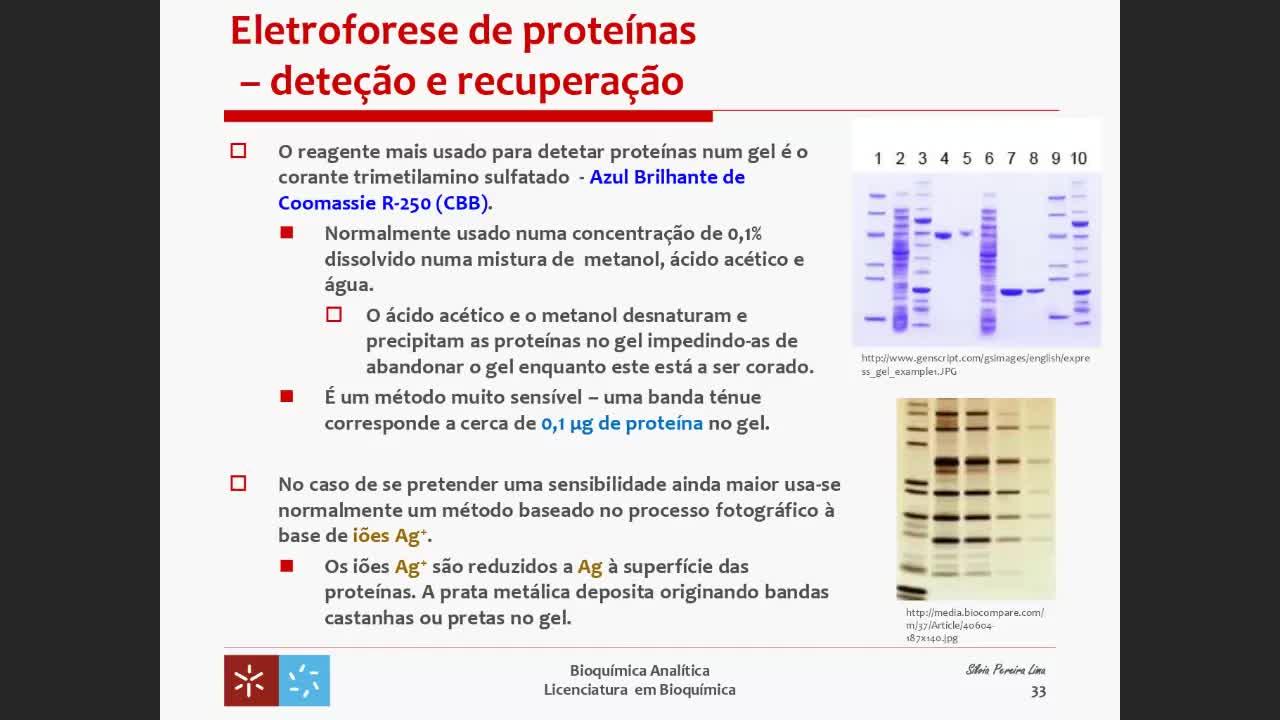 Eletroforese 5