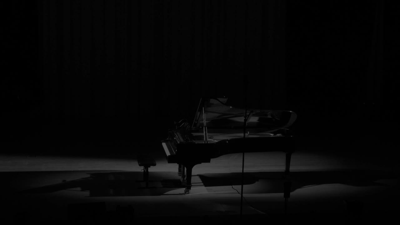 Swan Song - Íris Virgílio