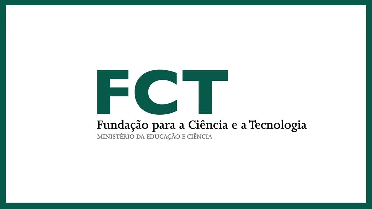 Evaluation of the Portuguese Foundation for Science and Technology