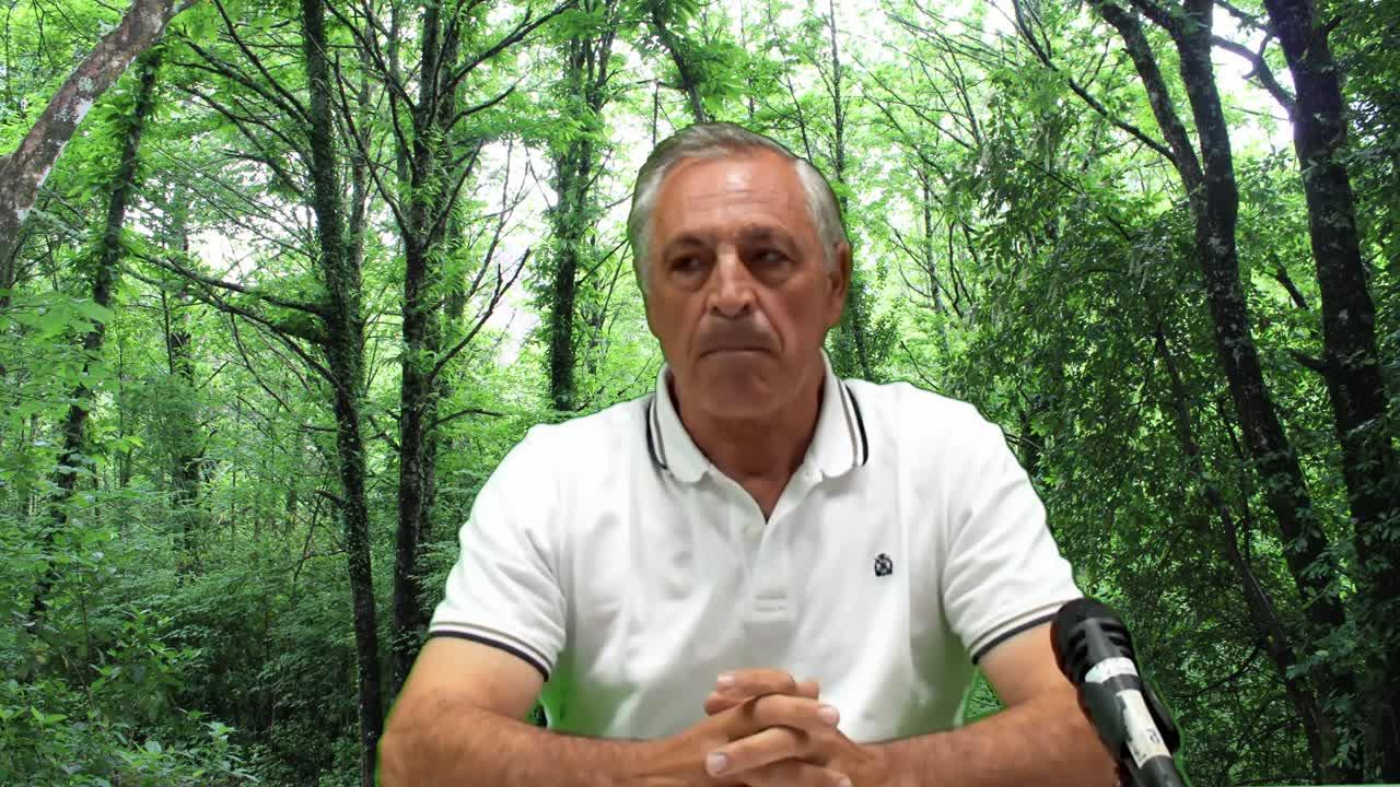 Apresentação de Carlos Pinto Gomes